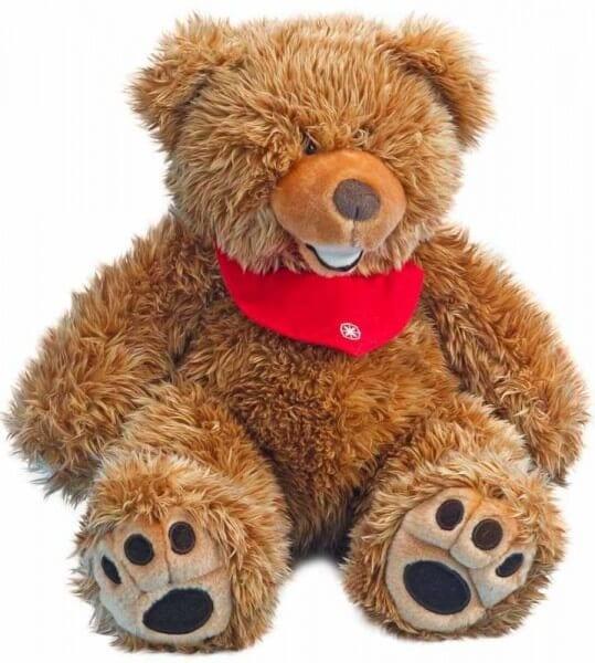Der Penya Grizzlybär ist ganz lieb