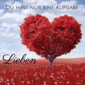 Liebe das Leben