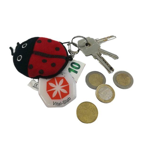 Schlüsselanhänger mit Münzen und Schlüsseln