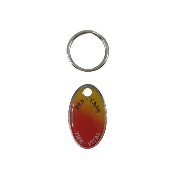 Halsbandmedaillon mit Ring