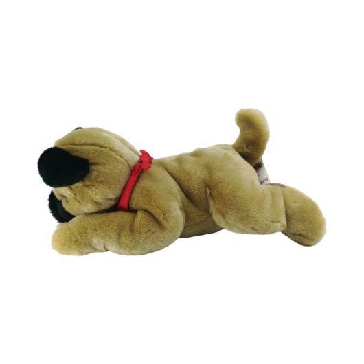Fauler Hund liegt auf dem Bauch